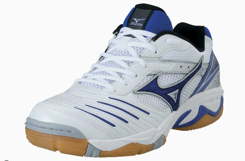 The Best Mizuno Volleyball Shoes Wave Lightning RX2