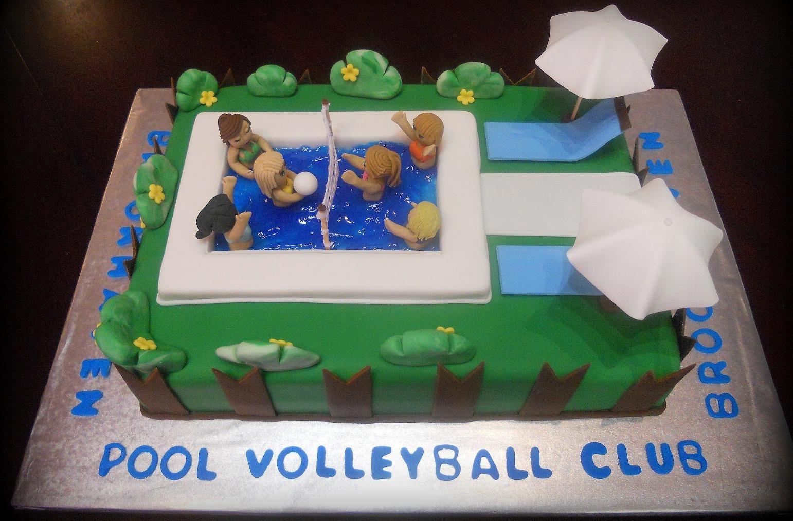 Volleyball Themed Birthday Cake Volleywood