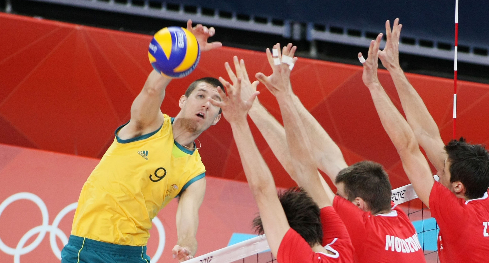 Adam White Australia Volleyball