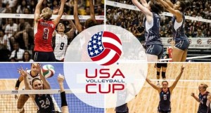 2014 usa volleyball cup usa brazil