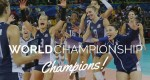 2014 fivb womens world championship