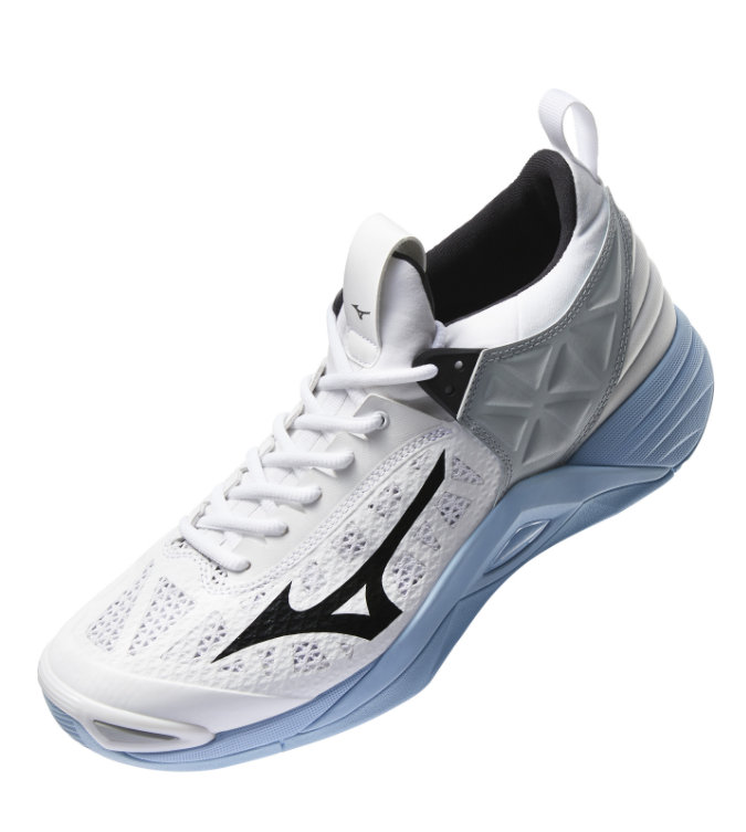 NEW Mizuno Volleyball Shoes: WAVE MOMENTUM